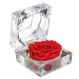Ewige Blume Dekoration Ringschachtel Rose Schmuckschatulle