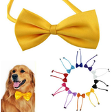 Chiens multicolores animaux noeud papillon chien cravate chat cravate animaux toilettage fournitures