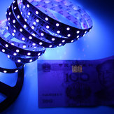 Purple UV Ultraviolet 5M SMD 3528 Purple 300 LED Détection de l'argent de lumière de bande de bande flexible DC12V