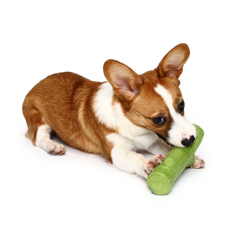 Lovely Branch Solid Molar Wearable Pet Toys Training dog Props Enhance the Intelligence Dog Toys