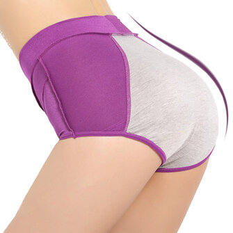 Comfy Waterproof High Waist Period Physiological Underwear Panties